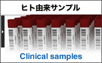 clinical samples